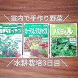 室内で手作り野菜!レタス・ストロベリー・バジルの水耕栽培|種まき3日後