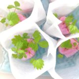 土を使わない!室内でワイルドストロベリーを水耕栽培~107日目の記録~